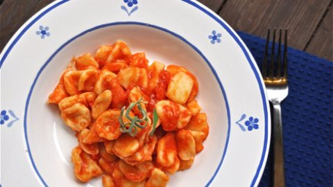 Cavatelli with tomato sauce on a blue and white plate