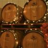 Knapp Winery Finger Lakes, NY