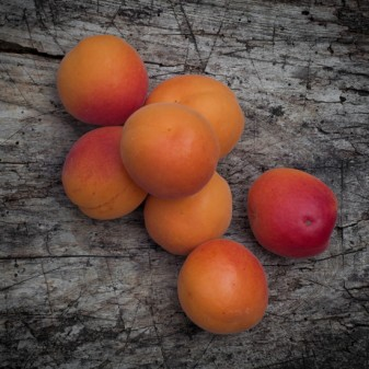 French apricots on eatlivetravelwrite.com