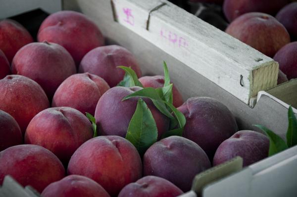 Peaches at Nerac market on eatlivetravelwrite.com