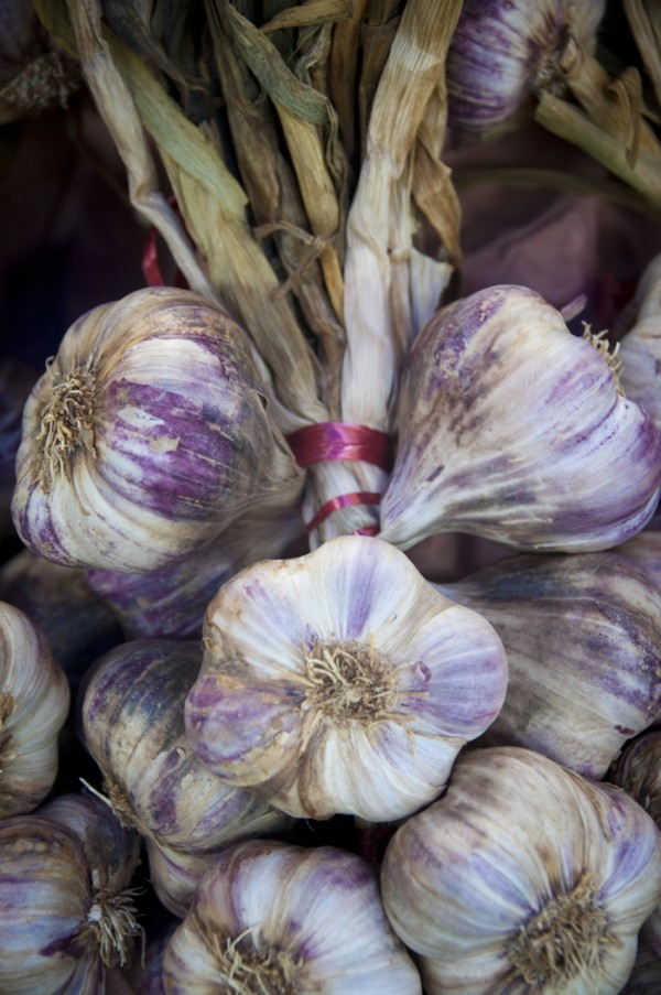 Garlic at Nerac Market