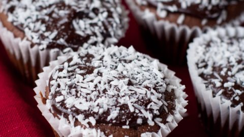 Chocolate coconut cupcakes with coconut flour gluten free
