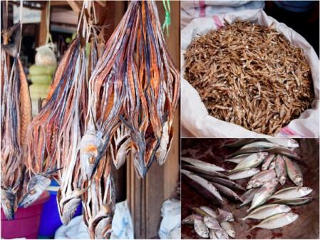 Fish at the Thandwe market Burma