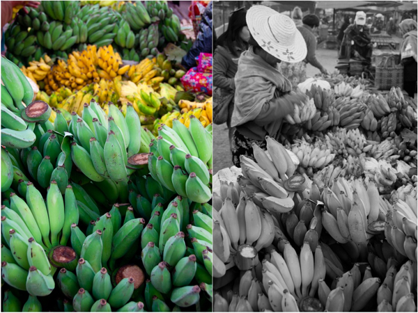 Bananas at Kalaw morning market