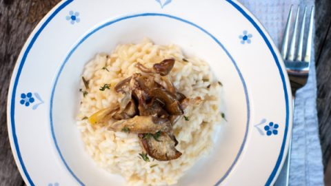 Mushroom risotto in a blue and white plate on a wooden tabletop