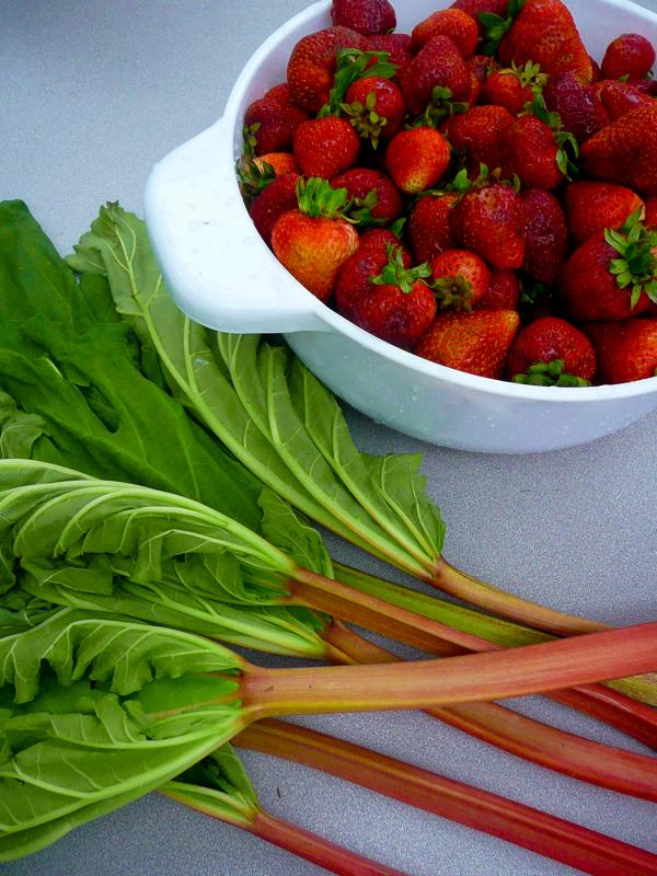 strawberries and rhubarb Mardi Michels eatlivetravelwrite.com