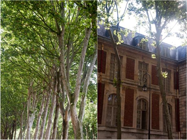 Streets of Versailles on eatlivetravelwrite.com