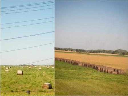 Hay bales on the Prairies on eatlivetravelwrite.com