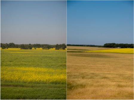 Views of the Prairies on VIA Rail Canadian on eatlivetravelwrite.com