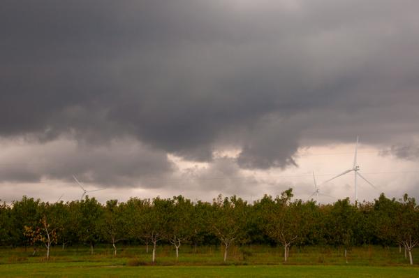 Landscape Chatham Kent on eatlivetravelwrite.com