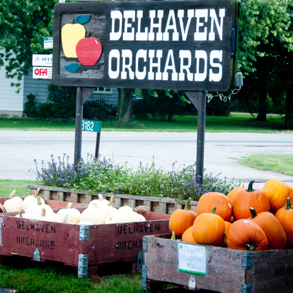 Delhaven Orchards Chatham Kent on eatlivetraveiwrite.com
