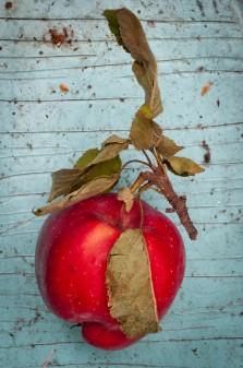 apple on eatlivetravelwrite.com