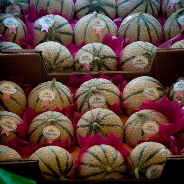 Melons at Marche Baudoyer on eatlivetravelwrite.com