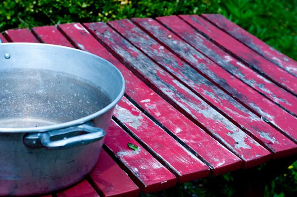 Kate Hills garden on eatlivetravelwrite.com