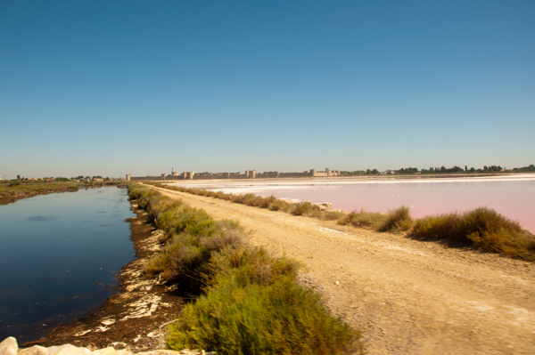 First look at the Camargue salt flats on eatlivetravelwrite.com