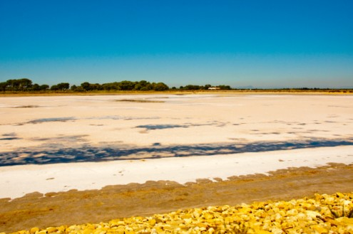 Salt flats in the Camargue as seen from le petit train on eatlivetravelwrite.com