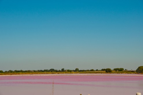 Blue sky and pink water in the Camargue on eatlivetravelwrite.com