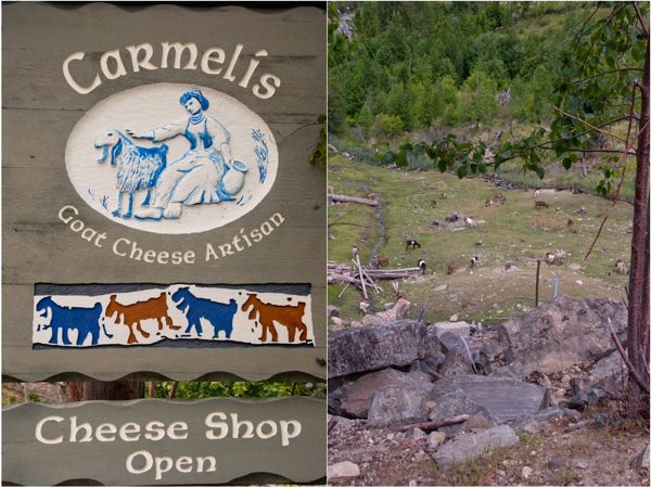 Carmelis Goat Farm Kelowna on eatlivetravelwrite.com