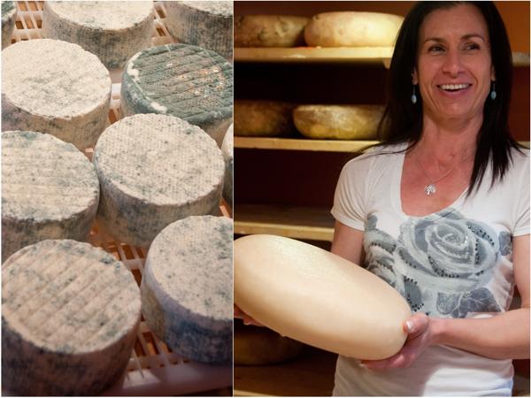 Carmelis goat cheese from Kelowna on eatlivetravelwrite.com