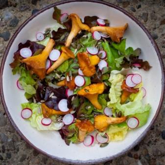 Chanterelle salad with radishes lettuce sunflower and pumpkin seeds on eatlivetravelwrite.com