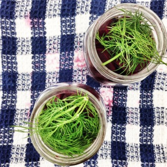 Beets pickling with dill on eatlivetravelwrite.com