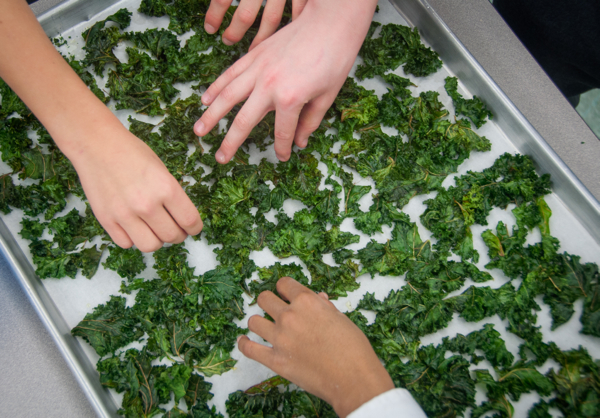 Kids eating kale chips on eatlivetravelwrite.com