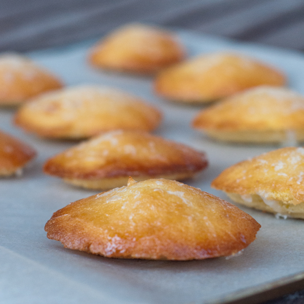 Lemon glazed madeleines from Baking Chez Moi on eatlivetravelwrite.com