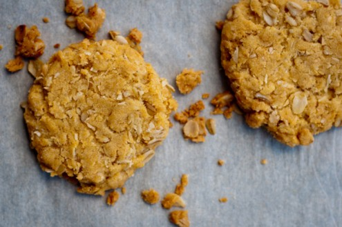 Two ANZAC biscuits on eatlivetravelwrite.com