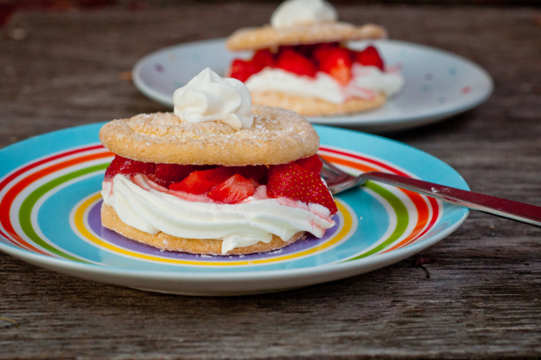 Strawberry Shortcake for Tuesdays with Dorie on eatlivetravelwrite.com