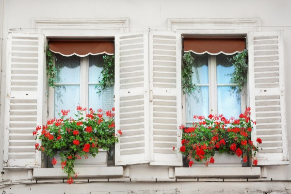Windows in Paris image from Shutterstock