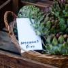 Artichokes at Stroud Farmers Market on eatlivetravelwrite.com