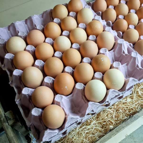 Eggs at Daylesford Organic Farm on eatlivetravelwrite.com