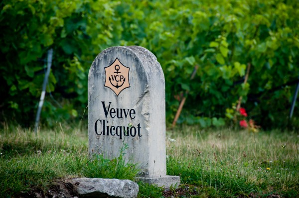 Veuve Cliquot vineyards on eatlivetravelwrite.com