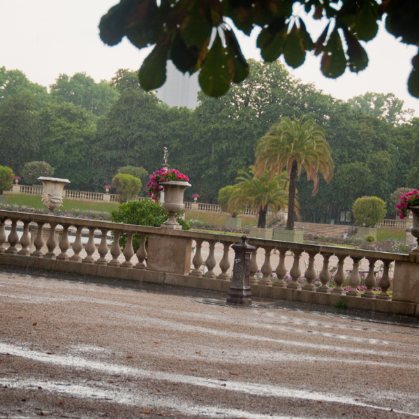 Summer rain in the Tuileries on eatlivetravelwrite.com