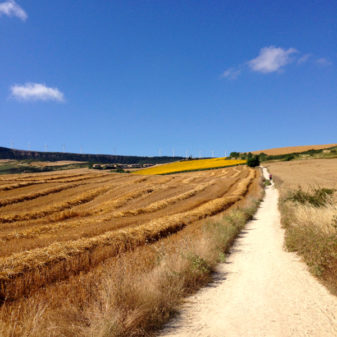 Blue sky and sunflowers on the Camino on eatlivetravelwrite.com