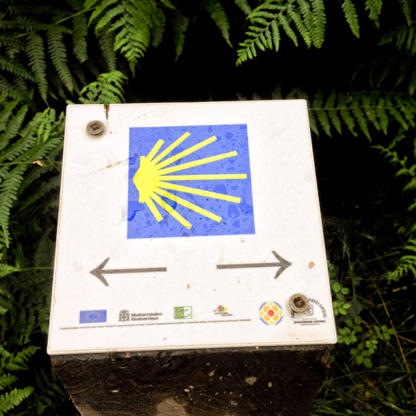 Which way on Camino de Santiago on eatlivetravelwrite.com