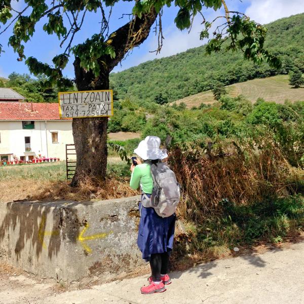 Looking for taxis in Linzoain on Camino de Santiago on eatlivetravelwrite.com