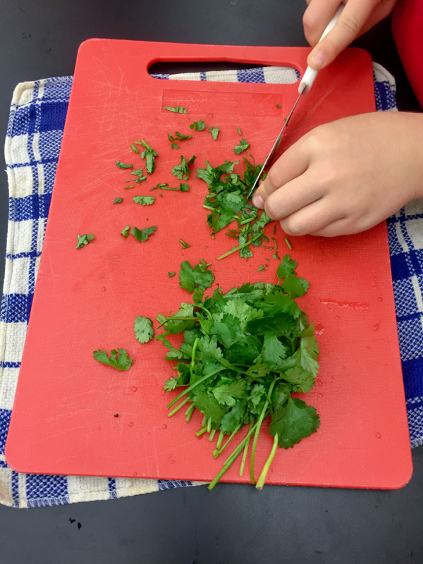 Children chopping cilantro on eatlivetravelwrite.com