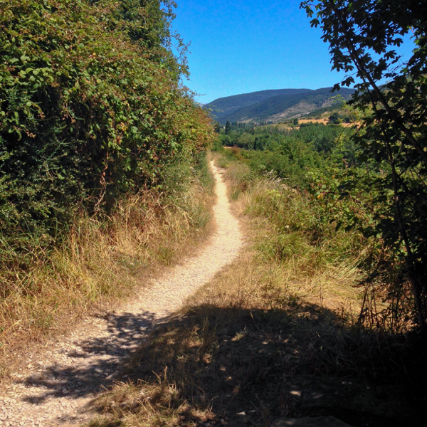 Trail on the Camino de Santiago on eatlivetravelwrite.com