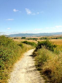 Looking back at Pamplona walking the Camino de Santiago on eatlivetravelwrite.com