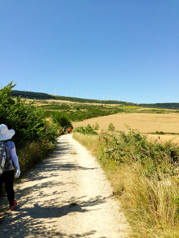 Heading up to Alto de Perdon walking the Camino de Santiago on eatlivetravelwrite.com