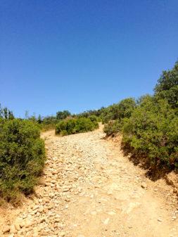Descending from Alto de Perdon walking the Camino de Santiago on eatlivetravelwrite.com