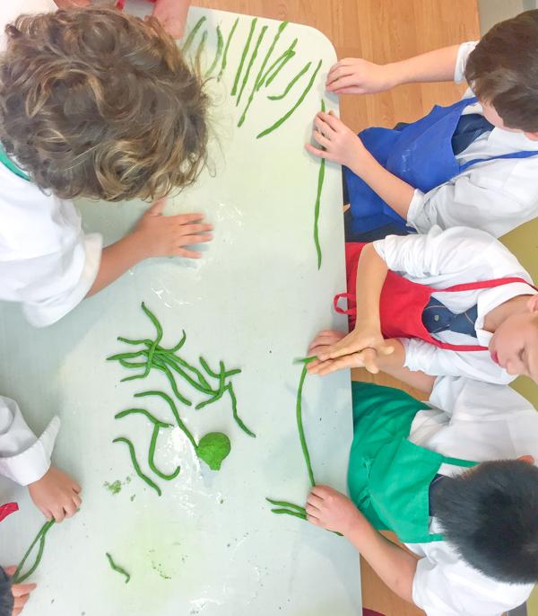 Kids rolling spinach pasta noodles on eatlivetravelwrite.com