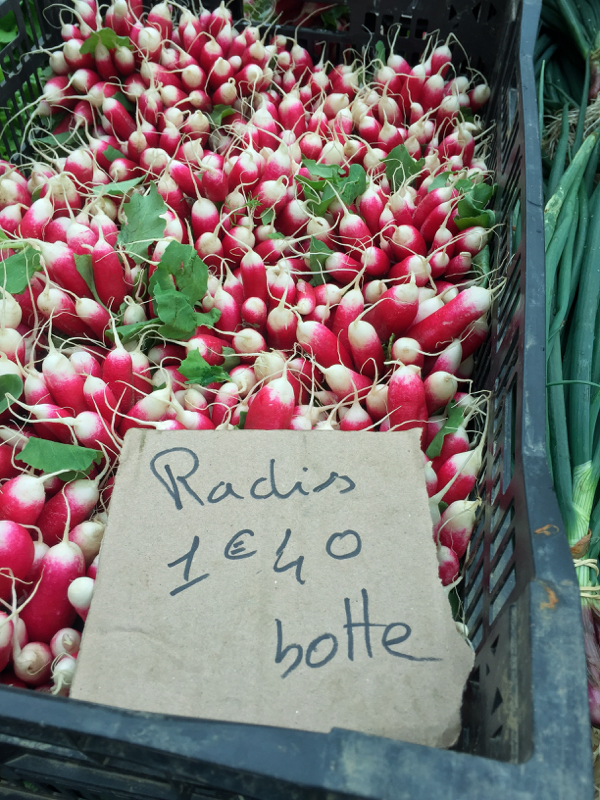Radishes at the market in Lyon image on eatlivetravelwrite.com
