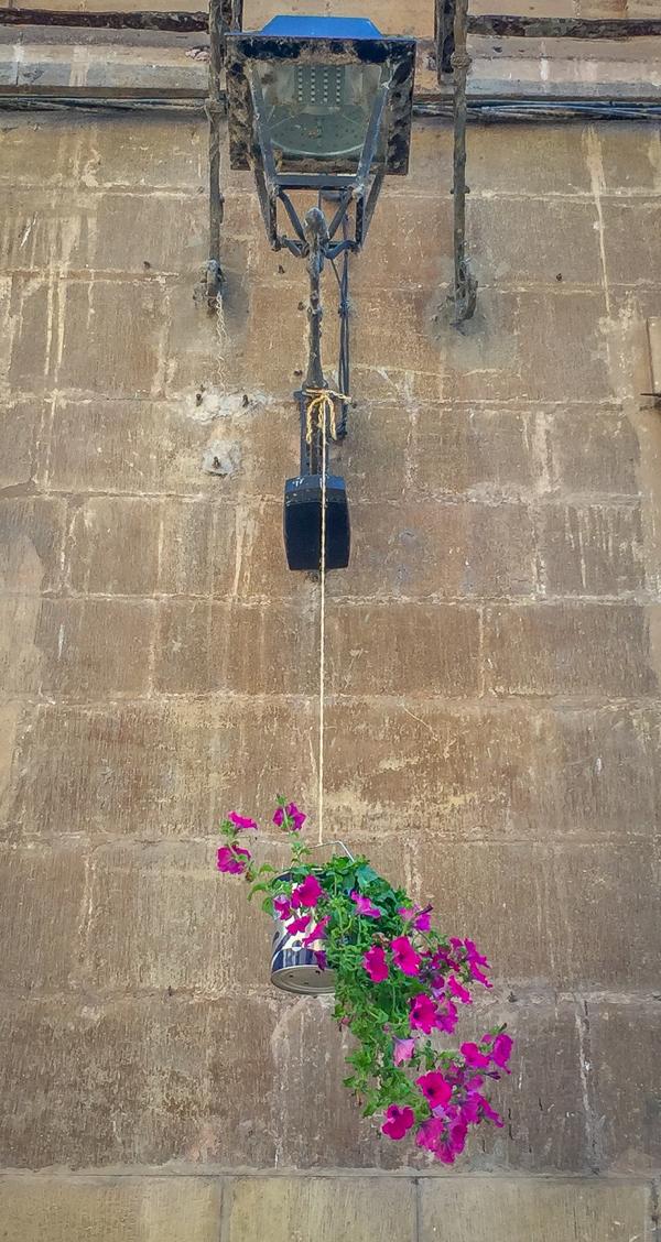 Paint can flower pots in Najera on the Camino de Santiago on eatlivetravelwrite.com