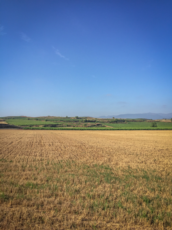Blue skies and hot weather on the Camino de Santiago on eatlivetravelwrite.com