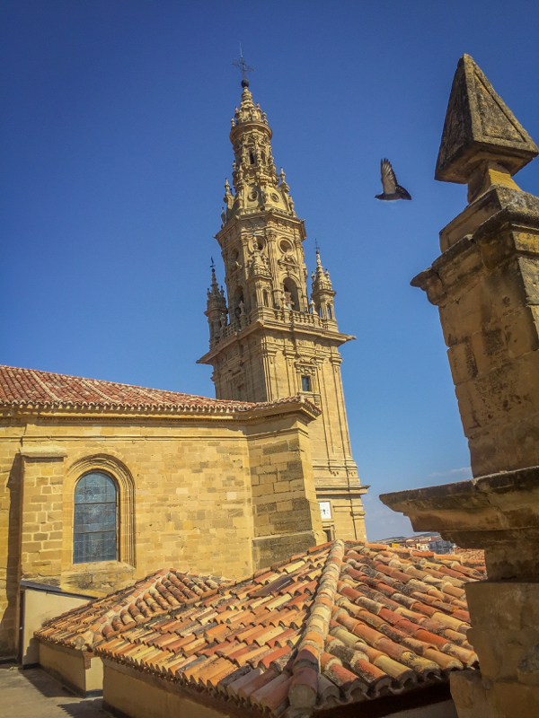 View from church tower in Santo Domingo de la Calzada on the Camino de Santiago on eatlivetravelwrite.com