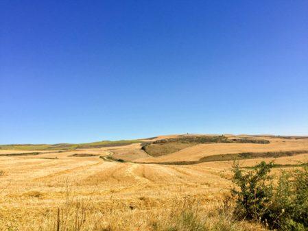 Landscapes on the Camino Frances Day 12 Belorado to Villafranca Montes de Oca on eatlivetravelwrite.com