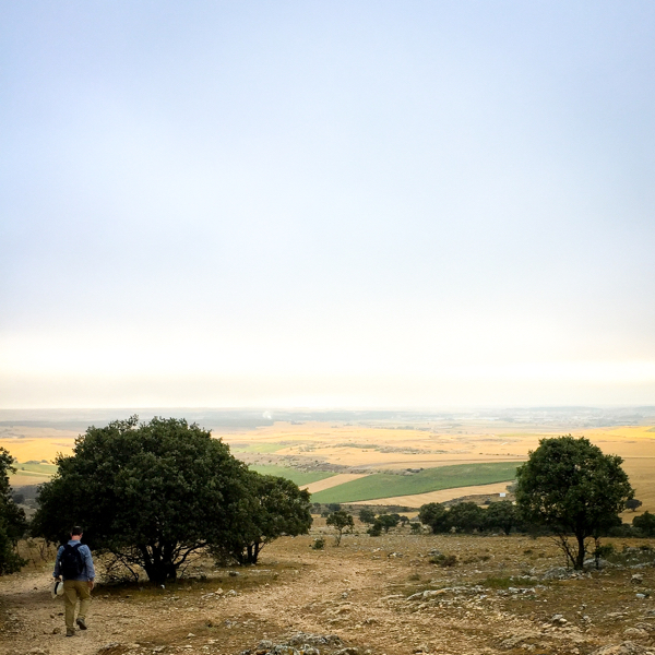 Misty day walking from Atapuerca to Burgos on the Camino de Santiago on eatlivetravelwrite.com