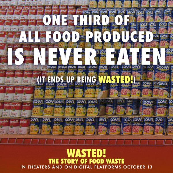 Food waste facts from WASTED!